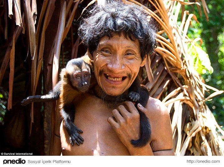 Primatlar, kabile için önemli bir besin kaynağı olsa da, emzirdikleri bir hayvanı asla yemiyorlar.