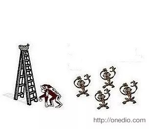 Daha sonra bilim adamları maymunlardan birini kafesten alıp farklı bir maymunu içeriye bırakıyor.