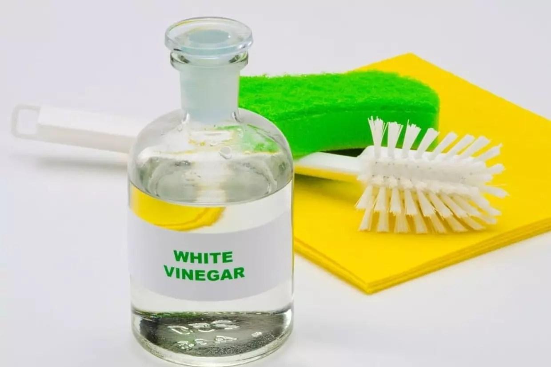 """Résultat de recherche d'images pour """"vinaigre blanc"""""""