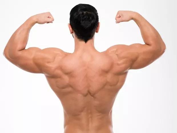 Musculation Les Exercices Pour Se Muscler Abdos