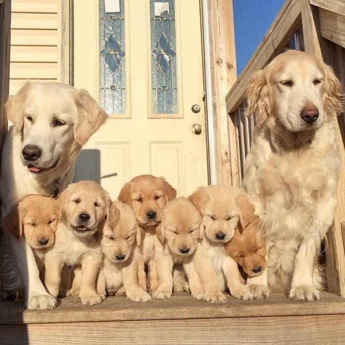Nothing is more important than a family