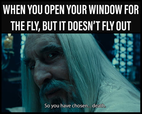 One Fly Swatter To Rule Them All 9gag