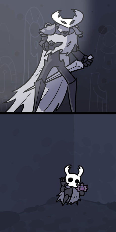 When A Dark Souls Gamer Starts Playing Hollow Knight 9gag