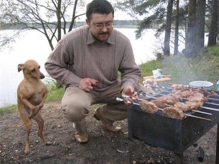 Dobby thanks master for the BBQ.