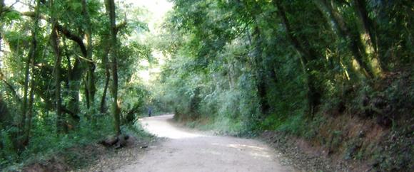 caminhada_580x242_3