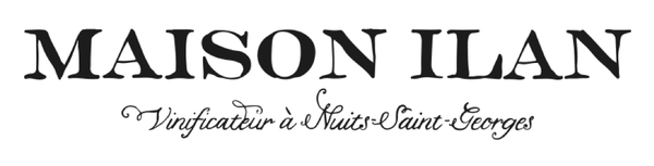 MAISON ILAN LOGO 3