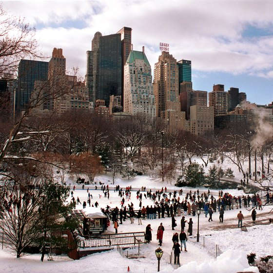 The Best Things To Do In Nyc When It S Snowing