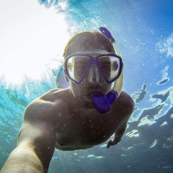 Snorkeling Around Islands Near Charleston SC USA Today