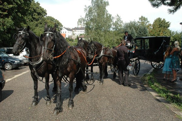 A Light Two Wheeled Carriage With Convertible Top Drawn By Horses The Snazzy Sports Car Of Day Driven Its Owner