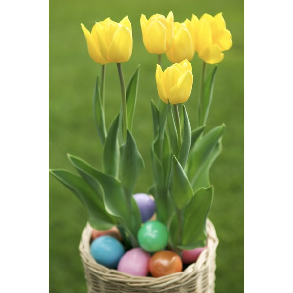 The Religious Meaning of Easter Flowers   Synonym