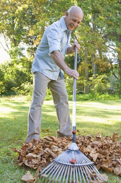 Are Mulched Leaves Good Your Lawn