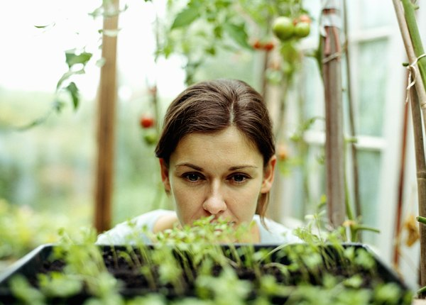 The Advantages Of Being A Botanist Woman