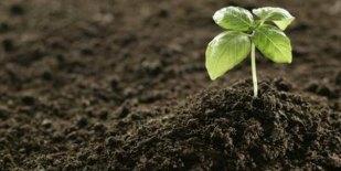 Image result for porousness of soil