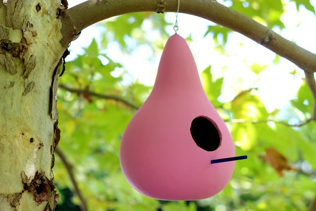 How To Make Gourd Birdhouses EHow