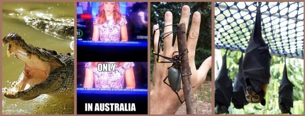 Only In Australia