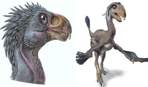 1) Incisovisaurus