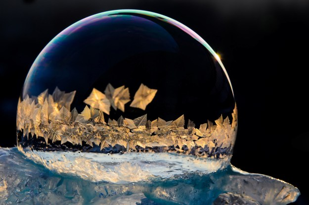 Mysterious Frozen Bubbles By Hope Carter 12