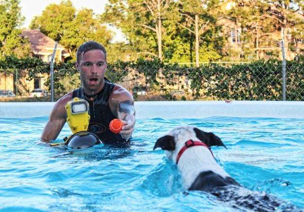 Underwater Dogs By Seth Casteel 19