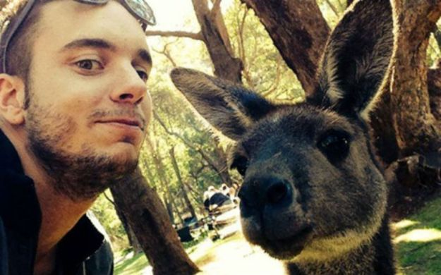 Snapping Selfies with Wild Animals Is a New Trend 22