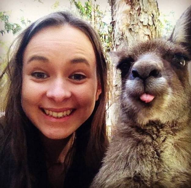 Snapping Selfies with Wild Animals Is a New Trend 23