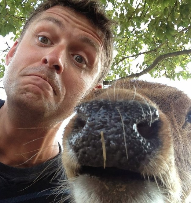 Snapping Selfies with Wild Animals Is a New Trend 8