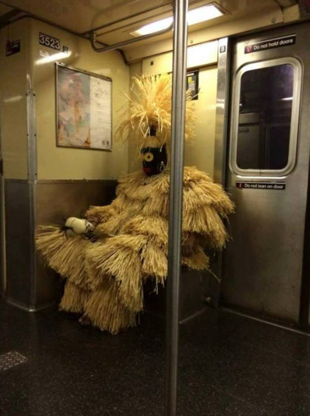 exceptionally-bizarre-subway-people-22