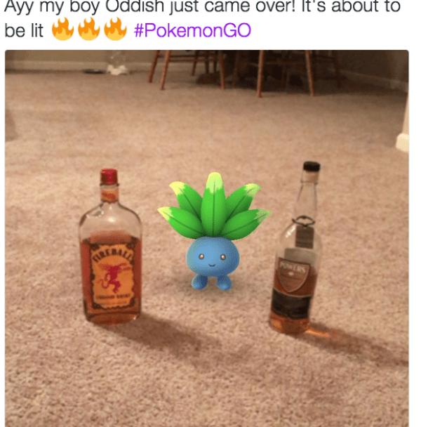 funniest-pokemon-go-memes-06