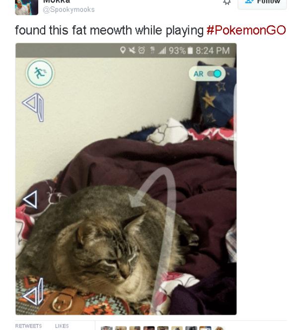 funniest-pokemon-go-memes-07