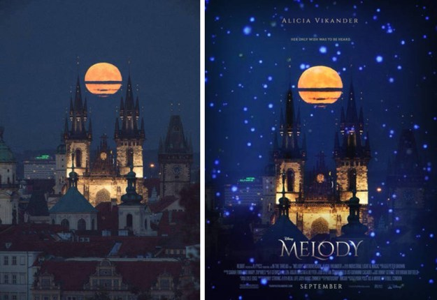 random_pictures_turned_into_awesome_movie_posters_10