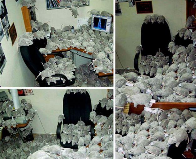 hilarious-office-pranks-23