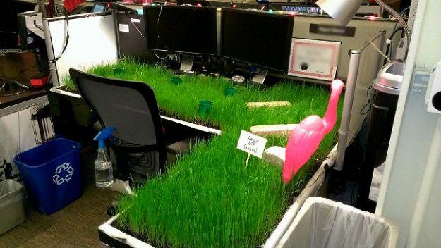 hilarious-office-pranks-27