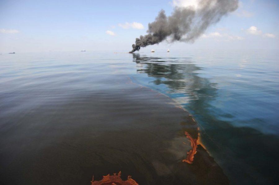 تسرب النفط من شركة بريتيش بتروليوم - 60.9 مليار دولار    أغلى 8 أخطاء ارتكبها العالم على الإطلاق  التوت الدماغ