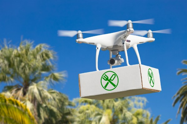 Food delivery | 8 Surprising Ways Drones Could Be Used in the Future | Brain Berries