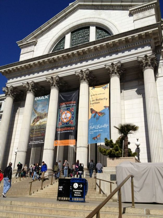 National Museum of Natural History (Washington DC) | 6 Best Natural History Museums In The World | Brain Berries