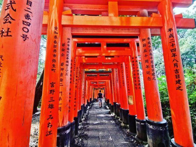 Святилище Фусими Инари   Киото – город, который стоит посетить хотя бы раз   Brain Berries