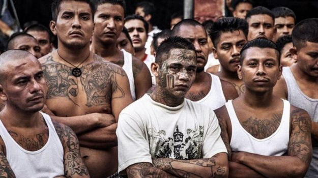 Mexican cartels | 7 biggest and most famous crime syndicates in the world | Brain Berries