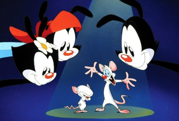 Animaniacs | 6 Unforgettable Shows From The 90s That Need To Make A Comeback | Brain Berries