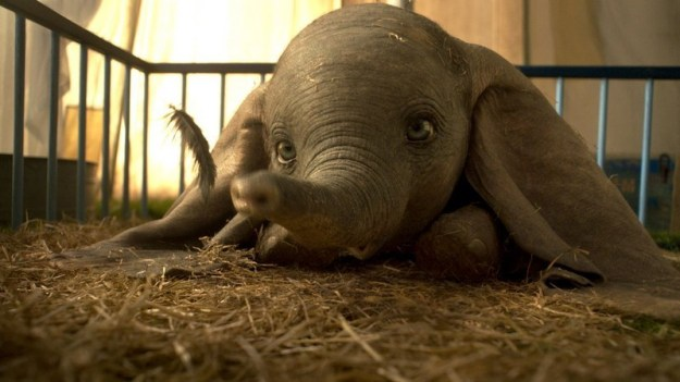 Dumbo | Disney Live-Action Remakes From Worst To Best | Brain Berries