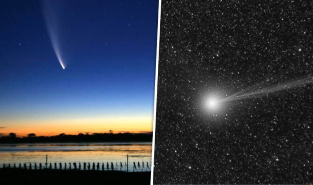 Halley's Comet – 5 010 000 km   Top 8 Comets Flying Closest to Earth   Brain Berries