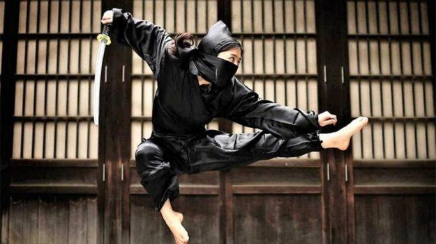 Ninjutsu   The Deadliest Martial Arts Disciplines   Brain Berries