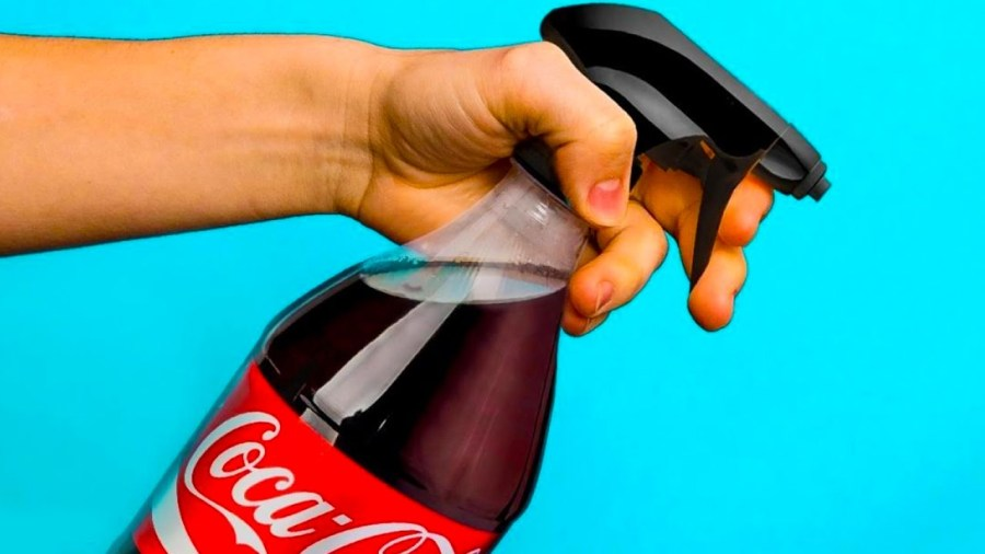 كوكا كولا تعمل كمنظف متعدد الأغراض    7 خرافات حول كوكا كولا من الرائع أن تسقط بسببها    التوت الدماغ