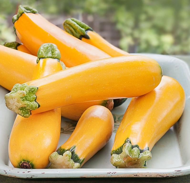 كوسة صفراء    6 الأطعمة الشائعة المعدلة وراثيا    التوت الدماغ
