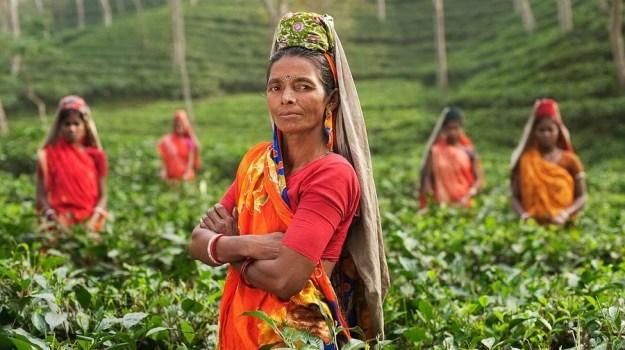 Бенгальский  язык | Топ-10 самых распространенных языков в мире | Brain Berries