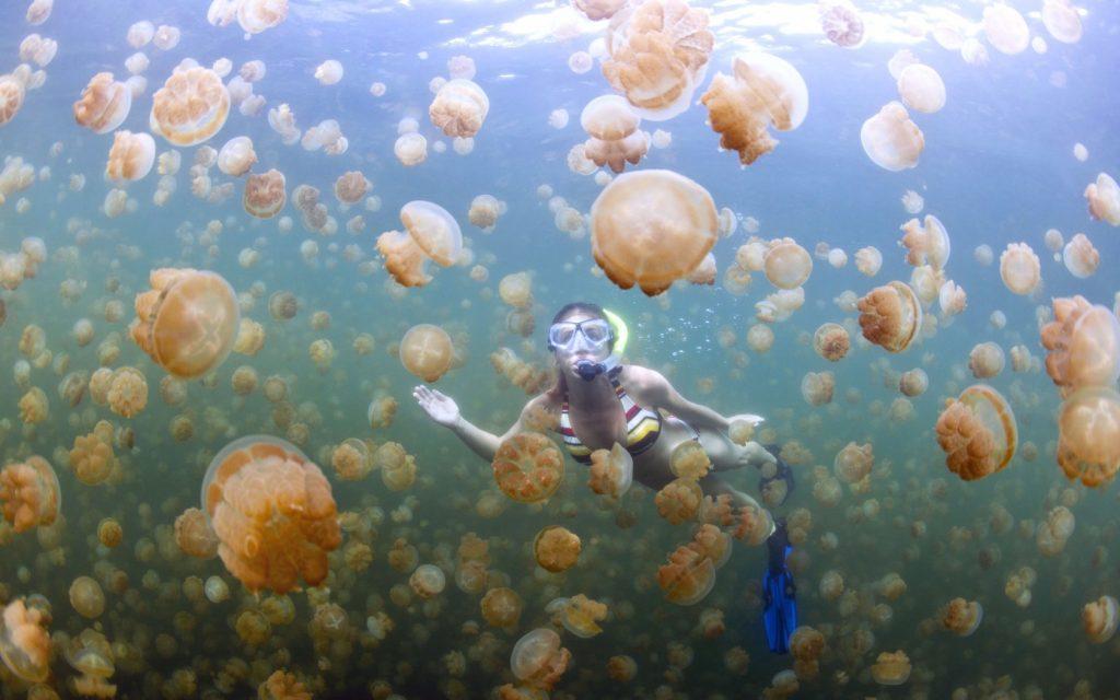 Liqeni i kandil deti |  15 vendet më të çuditshme në të gjithë botën që duhet të vizitoni në vitin 2020 |  ZestRadar