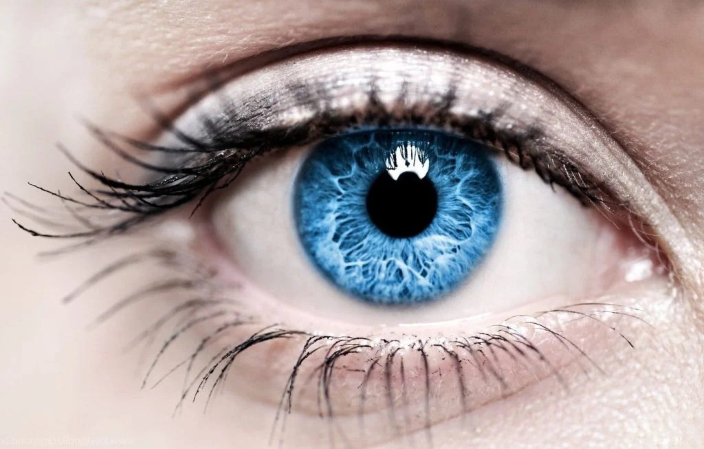 1. Genetic Mutation | Unbelievable Reasons Why Blue-Eyed Humans Are Unique | Brain Berries
