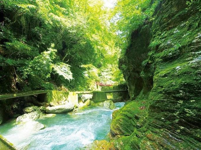 仁淀ブルーはガチで青い!高知県「仁淀川」は美しすぎる清流 | LINEトラベルjp 旅行ガイド