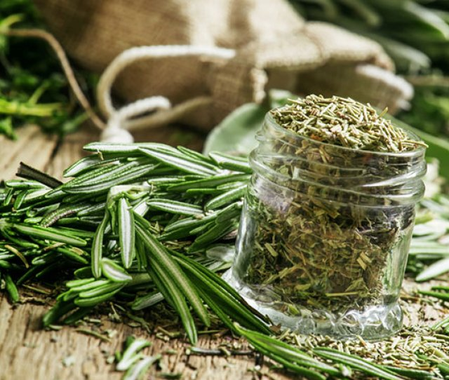 Fat Molecules It Also Keeps Your Hunger At Bay As You Feel Full For A Longer Period Of Time After You Eat Something Prepared With Rosemary Or Drink A