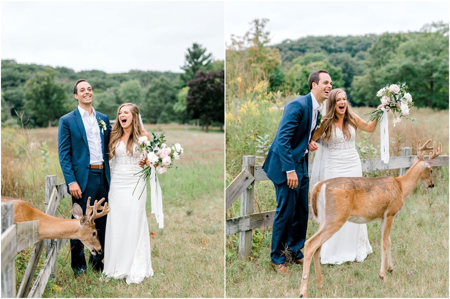 A Wedding Photoshoot To Remember Gets Interrupted By A Deer #2   Her Beauty