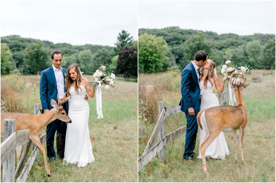 A Wedding Photoshoot To Remember Gets Interrupted By A Deer #3   Her Beauty