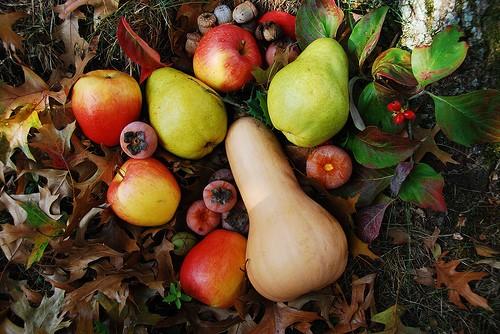 Осенние фрукты   Что есть осенью: 7 полезных сезонных продуктов   Her Beauty